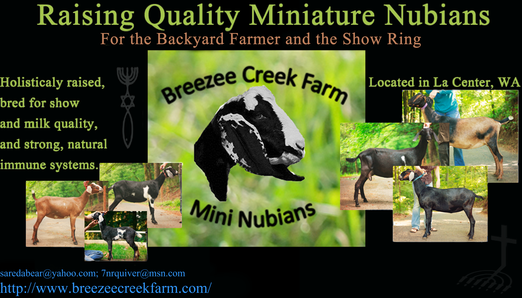 Breezee Creek Farm | Miniature Nubian Dairy Farm